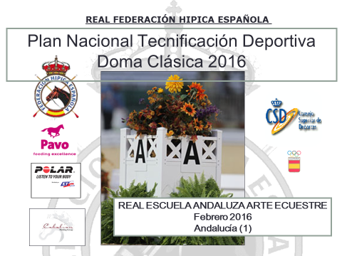 PNTD Andalucia