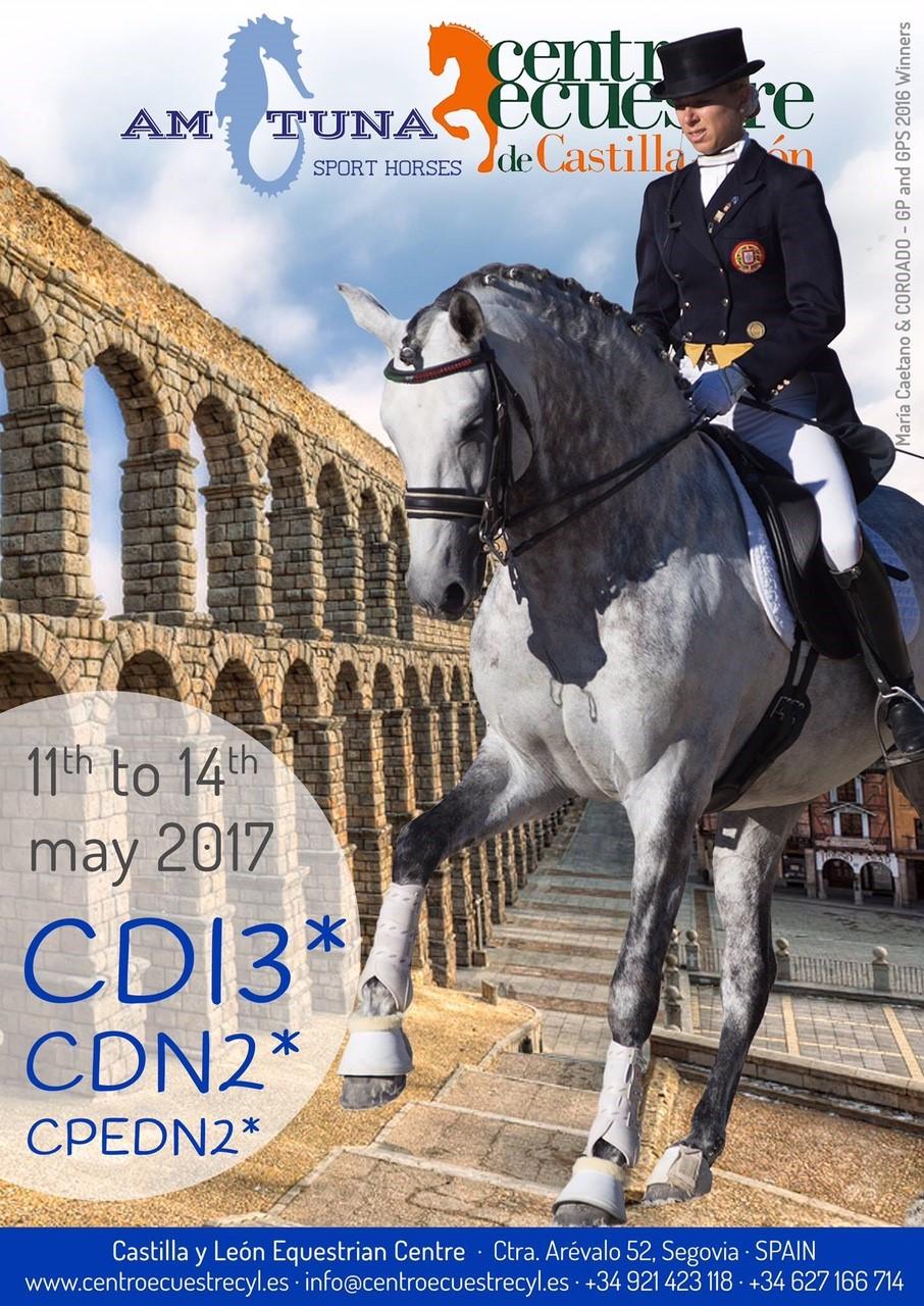 CDI Segovia 2017